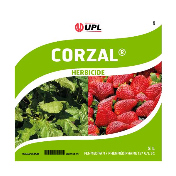 Corzal