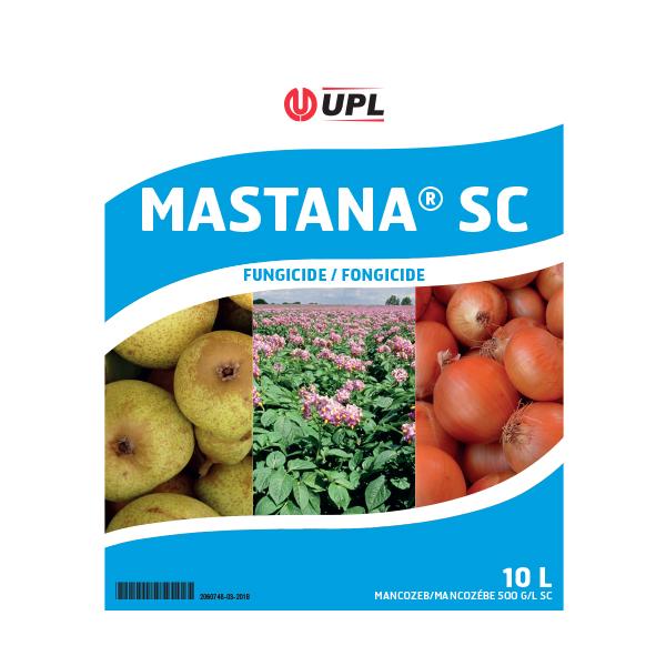 Mastana SC